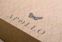 Apollo Identity, Space Butterflies